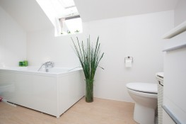 Realisation vues interieures sanitaires 19